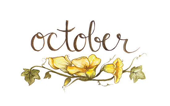 October | 2014 appointment calendar, watercolour, floral