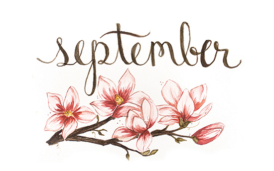 September | 2014 appointment calendar, watercolour, floral